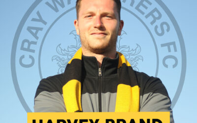 Harvey Brand – Welcome To The Wands